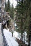 Passaggio pedonale ghiacciato del canyon Fotografia Stock