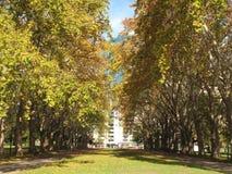 Passaggio pedonale, giardini di Carlton, Melbourne, Australia Immagini Stock