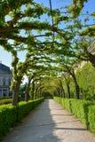 Passaggio pedonale invaso nel giardino del cortile del resid di Wurzburg fotografie stock