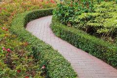 Passaggio pedonale nel giardino Immagine Stock Libera da Diritti