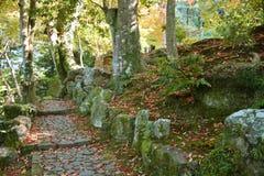 Passaggio pedonale nel giardino di Yoshikien, Nara Immagini Stock