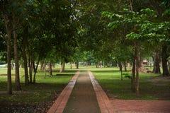 Passaggio pedonale nel parco al parco storico di Ayutthaya fotografia stock