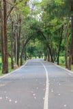 Passaggio pedonale nel parco di città giardino Fotografia Stock