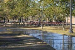 Passaggio pedonale nel parco di Encanto, Phoenix, AZ Fotografia Stock Libera da Diritti