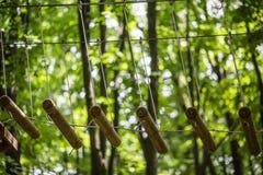 Passaggio pedonale nel parco naturale fotografie stock libere da diritti