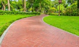 Passaggio pedonale nel parco tropicale Fotografia Stock