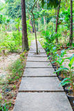 Passaggio pedonale nella foresta Immagini Stock Libere da Diritti