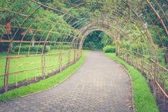 Passaggio pedonale o sentiero per pedoni di legno di bambù del tunnel in parco pubblico Fotografia Stock