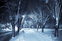 Passaggio pedonale silenzioso sotto neve Fotografia Stock Libera da Diritti