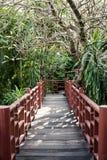 Passaggio pedonale sul secondo piano circondato dagli alberi. Fotografia Stock Libera da Diritti