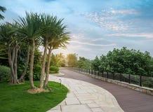 Passaggio pedonale in un bello parco fotografia stock libera da diritti