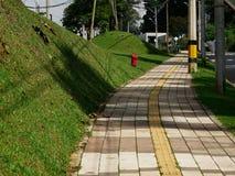 Passaggio pedonale urbano delle mattonelle con un'accessibilità speciale della linea centrale per la gente cieca fotografie stock libere da diritti