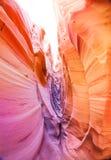 Passaggio stretto in canyon Utah, U.S.A. della scanalatura della zebra Fotografie Stock