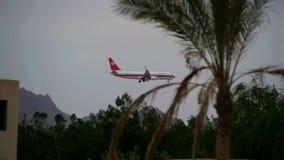 Passagierflugzeug in der Himmel-Landung auf dem Hintergrund von Bergen und Palmen in Ägypten Langsame Bewegung stock video
