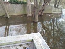 Passaic rzeka zalewa Wayne, NJ Fotografia Royalty Free