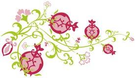 passande pomegranate för filialöst Royaltyfri Foto