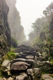 Passando uma rocha gorge com paredes íngremes ao caminhar imagem de stock