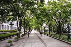 Passants par dans des rues d'Osaka et des parcs pendant un jour d'été chaud, Osaka central, île de Nakanoshima, Japon, photos libres de droits