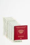 Passaporte e moeda do russo Fotos de Stock