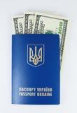 Passaporto internazionale con soldi Fotografia Stock Libera da Diritti