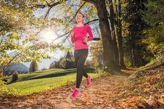 Passare la foresta di autunno immagini stock libere da diritti