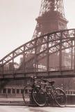 Passarelle debily Parigi Francia della Torre Eiffel Fotografia Stock Libera da Diritti