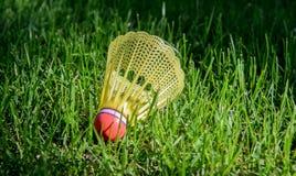Passarinho do badminton na grama verde Imagens de Stock Royalty Free