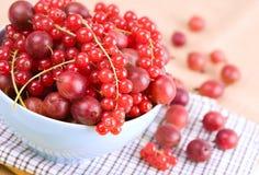 Passas de Corinto vermelhas e gooseberries imagem de stock