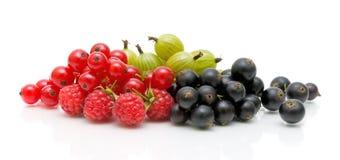 Passas de Corinto vermelhas e pretas e gooseberries em um branco imagem de stock royalty free