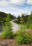 Passe, estrada da montanha, Altai, Rússia Imagens de Stock Royalty Free