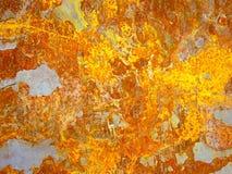 Passe a folha com oxidação Imagem de Stock Royalty Free