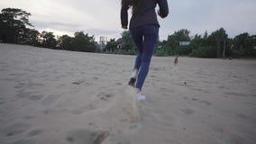 Passeggiata con il cane sulla spiaggia video d archivio