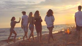Passeggiata dei tipi su una spiaggia stock footage