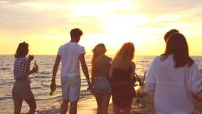 Passeggiata dei tipi su una spiaggia video d archivio