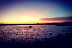 Passeggiata del cane di tramonto fotografia stock libera da diritti