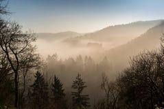 Passeggiata del castello in nebbia profonda immagine stock