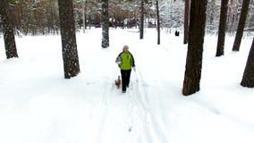 Passeggiata del figlio e della madre nel tiro aereo della foresta di inverno video d archivio
