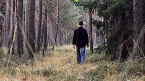 Passeggiata del giovane in foresta dalla parte posteriore stock footage