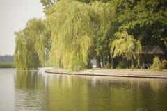 Passeggiata del lago Fotografia Stock Libera da Diritti