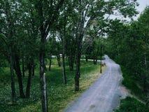 Passeggiata del parco Fotografia Stock