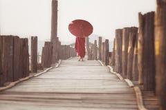 Passeggiata del principiante sul ponte boscoso del bein di u immagini stock