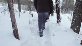 Passeggiata dell'uomo attraverso la foresta video d archivio