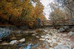 Passeggiata dell'uomo sul ponte di legno in autunno fotografia stock libera da diritti