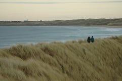 Passeggiata della duna di sabbia Fotografia Stock