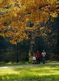 Passeggiata della famiglia nella foresta fotografie stock