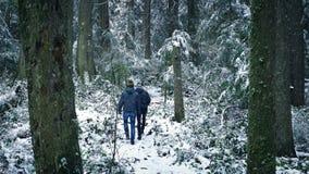 Passeggiata della gente attraverso Forest In Snowfall video d archivio