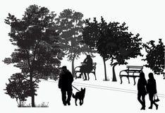 Passeggiata della gente nel parco Immagine Stock