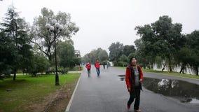 Passeggiata della gente sulla via video d archivio