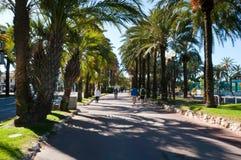 Passeggiata della palma un bello giorno di estate a Cannes, Francia Immagini Stock