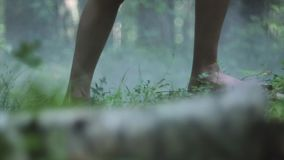 Passeggiata delle gambe della donna attraverso la foresta stock footage